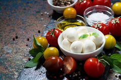 Mozzarella, fresh vegetables and spices Royalty Free Stock Images