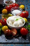 Mozzarella, fresh vegetables and spices on a dark background Stock Images