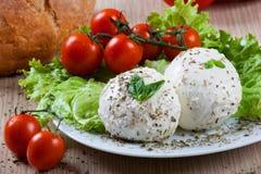 Mozzarella, Gemüse und Tomaten Lizenzfreie Stockfotografie
