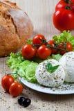 Mozzarella, Gemüse und Tomaten Lizenzfreies Stockfoto