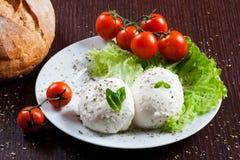 Mozzarella, Gemüse und Tomaten Stockfotografie