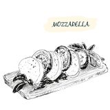 Mozzarella. Hand drawn illustration. Grahpic still life Stock Photography