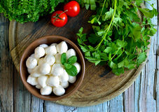 Mozzarella with herbs Royalty Free Stock Photography