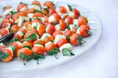 Mozzarella, körsbärsröda tomater och ny basilika i en platta Fotografering för Bildbyråer