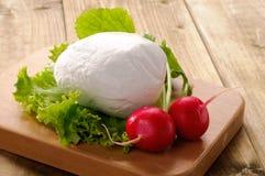Mozzarella, lettuce and radishes Stock Photography