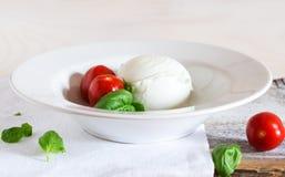 Mozzarella med basilika och tomaten på den vita plattan Royaltyfri Bild