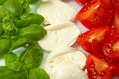 Mozzarella mit tomtoes und Basilikum Stockbild
