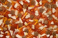 Mozzarella and mushroom pizza. Closeup of mozzarella cheese and mushroom pizza with tomato Royalty Free Stock Photos