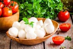 Mozzarella, organic cherry tomatoes and fresh basil Stock Image