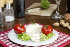 Mozzarella på en platta med sallad och tomater arkivfoton