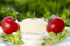 Mozzarella på en platta med sallad och tomater arkivfoto