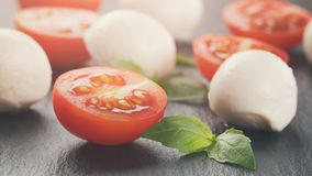 Mozzarella piłki z pomidorami i basilem Zdjęcia Royalty Free
