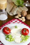 Mozzarella on a plate with salad and tomatoes and some ingredients. Mozzarella on a plate salad and tomatoes and some ingredients Royalty Free Stock Images