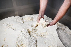 Mozzarella Provola Ricotta Factory Royalty Free Stock Images