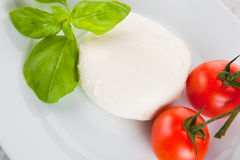 Mozzarella salad as Italian flag Royalty Free Stock Image