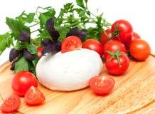 Mozzarella for salad Stock Photos