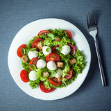 Mozzarella salad with crunchy fried croutons Stock Photos