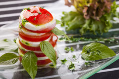 Mozzarella Salad Stock Image