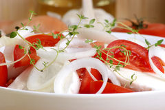 Mozzarella salad with some tomato slices. Organic mozzarella salad with some tomato slices Stock Photo