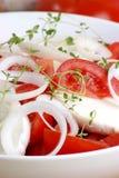 Mozzarella salad with some tomato slices. Organic mozzarella salad with some tomato slices royalty free stock image