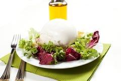 Mozzarella and salad Stock Photo