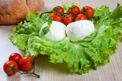 Mozzarella, Salat und Tomaten Lizenzfreies Stockfoto