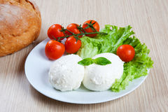 Mozzarella, Salat und Tomaten Lizenzfreie Stockbilder