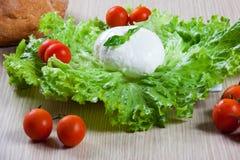 Mozzarella, Salat und Tomaten Stockbild