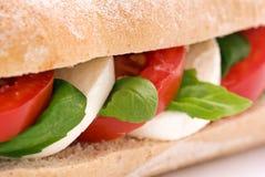 Mozzarella sandwich Royalty Free Stock Photography