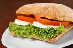 Mozzarella sandwich Royalty Free Stock Photo