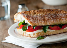 Mozzarella sandwich Stock Photography
