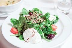 Mozzarella and spinach Stock Photography