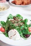 Mozzarella and spinach salade Stock Photos