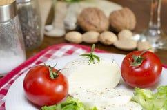 Mozzarella su un piatto con insalata e pomodori ed alcuni ingredienti Fotografie Stock