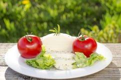 Mozzarella su un piatto con insalata ed i pomodori Fotografie Stock Libere da Diritti