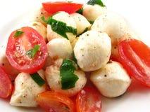 Mozzarella-Tomate-Salat Stockfotografie