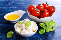 Mozzarella, tomates et basilic photo stock