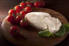 Mozzarella with Tomato and Basil Royalty Free Stock Photos