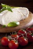 Mozzarella with Tomato and Basil Stock Image