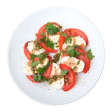 Mozzarella with tomato, basil and capers sauce Royalty Free Stock Photography