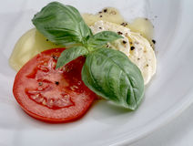 Mozzarella, tomato and basil on white plate Royalty Free Stock Photos