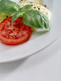 Mozzarella, tomato and basil on white plate Royalty Free Stock Image