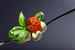 Mozzarella with tomato cherry and green basil . Royalty Free Stock Photography