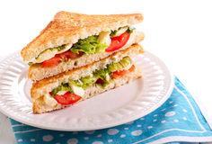 Mozzarella and tomato  grilled sandwich Royalty Free Stock Images
