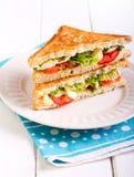 Mozzarella and tomato  grilled sandwich Royalty Free Stock Photos
