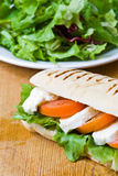 Mozzarella and tomato panini Stock Photography