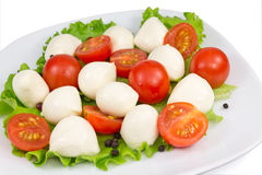 Mozzarella, tomato and salad Stock Images