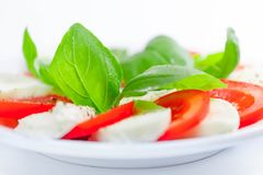 Mozzarella and tomato salad with basil. Mozzarella and tomato salad with fresh, green basil leaves - appetizer on white background Stock Photos