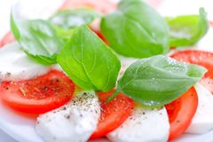 Mozzarella and tomato salad with fresh, green basil leaves - app. Etizer on white background royalty free stock photos