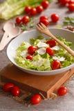 Mozzarella and tomato salad Royalty Free Stock Image